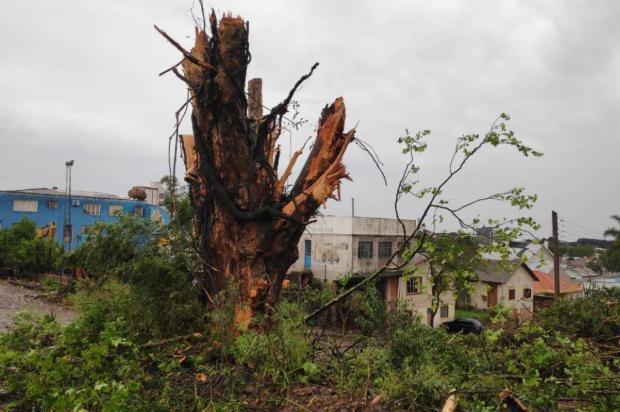 Vento de até 130 km/h atinge Lagoa Vermelha, destelha casas e deixa cidade sem energia elétrica